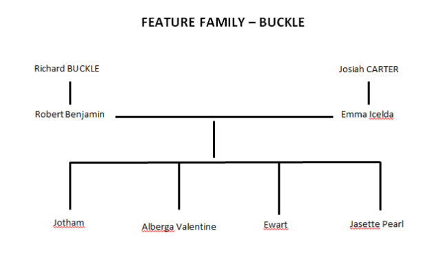 BUCKLE -  Feature Family