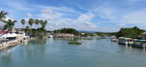 Blk River 2